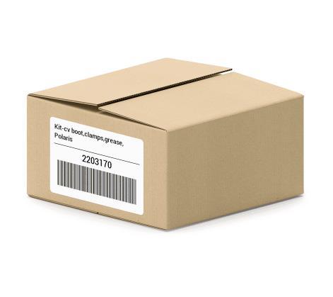 2203170 Polaris Kit-CV Boot Clamps Grease